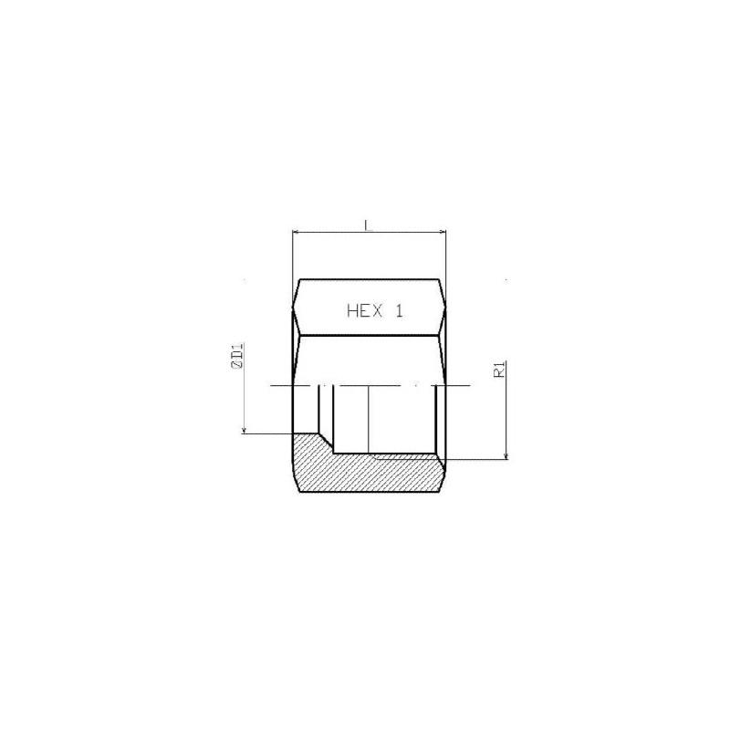 Wartelmoer 8L RVS